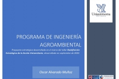 Evidencia-REAU-2020_pages-to-jpg-0001
